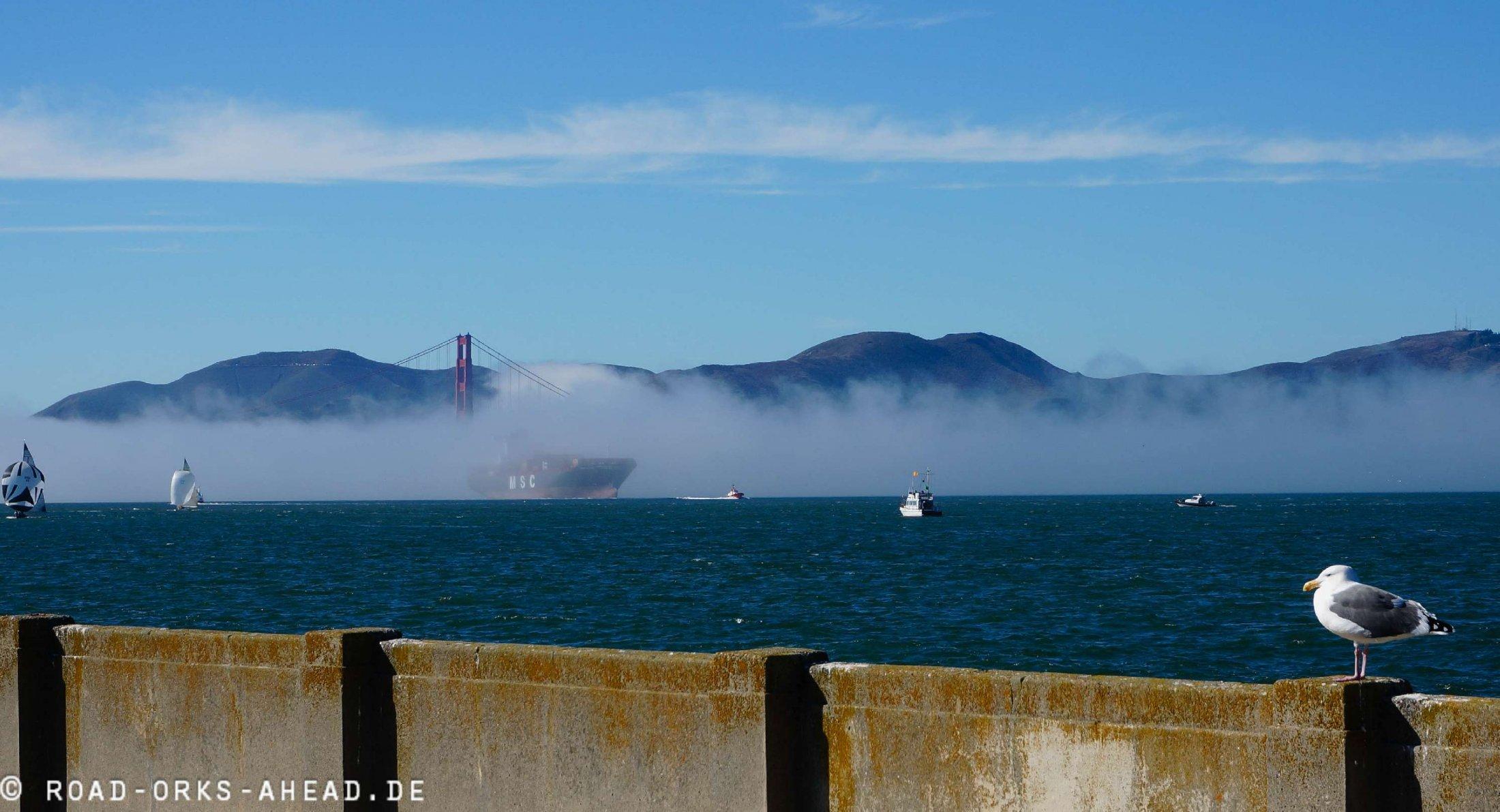 Bay im Nebel