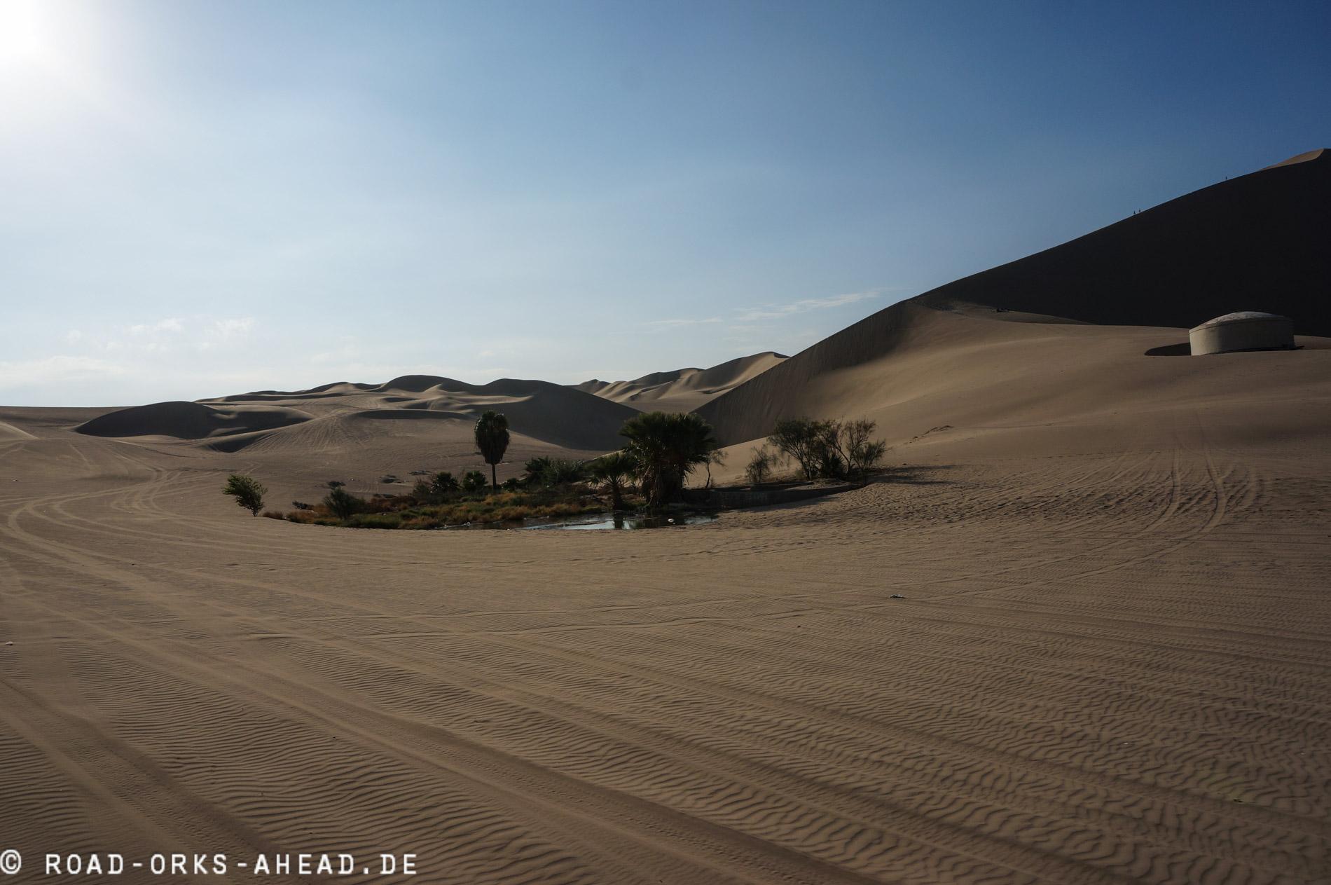 Wüstenoase
