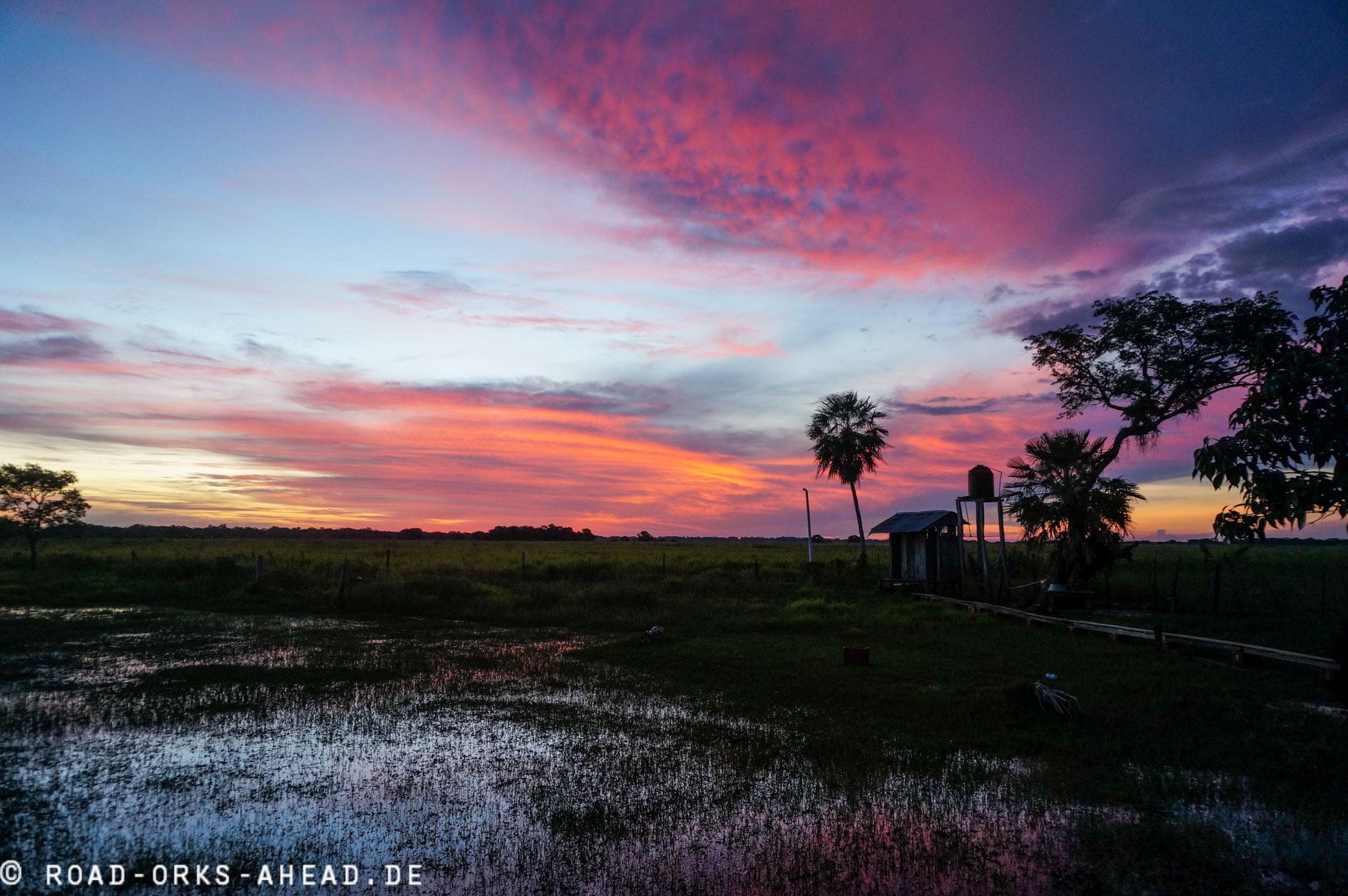 Sonnenuntergänge im Dschungel sind spitze