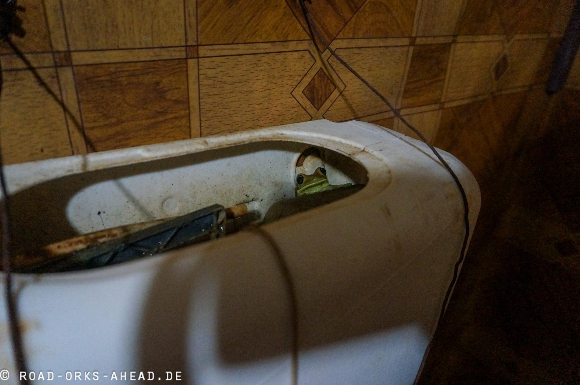 Unser Toilettengast