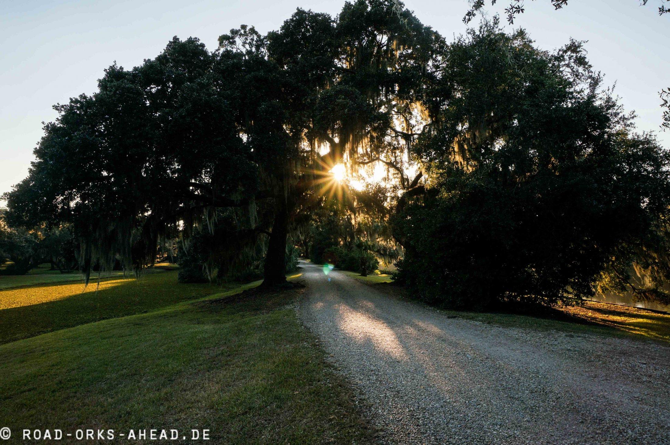 Sonnenuntergang in Louisiana