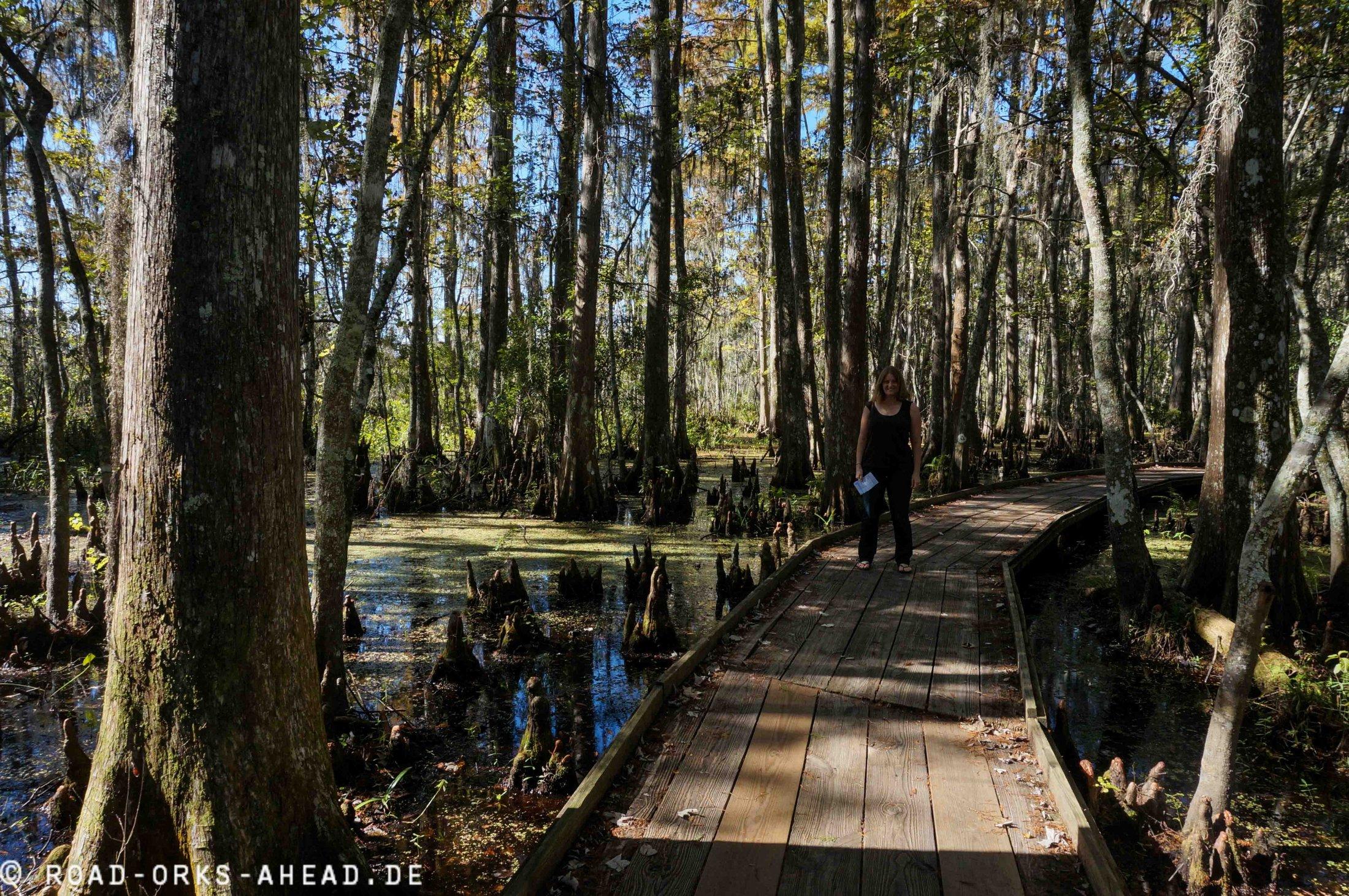 Jean Lafitte Nature Preserve