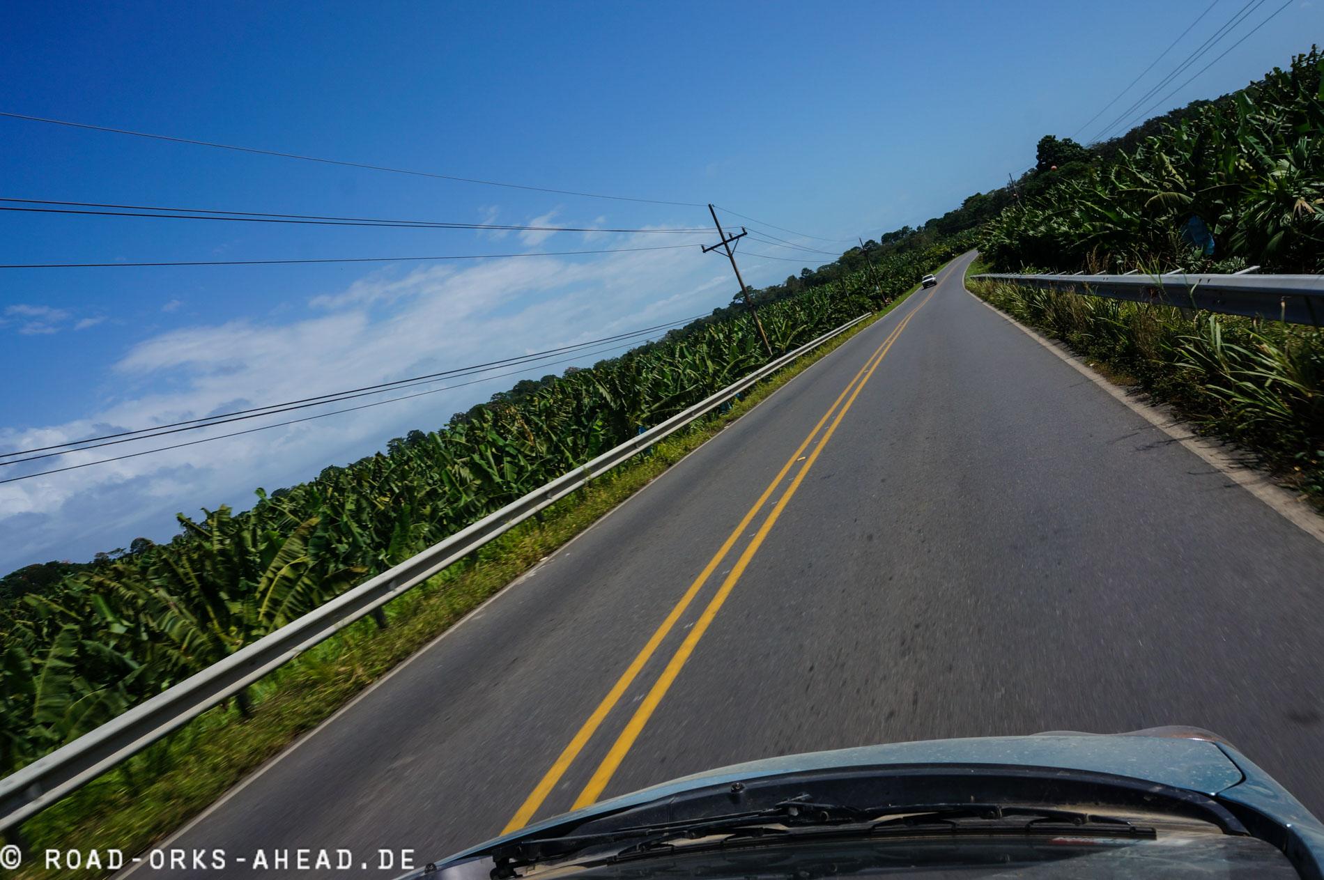 Costa Rica ist einer der größten Bananen Produzenten