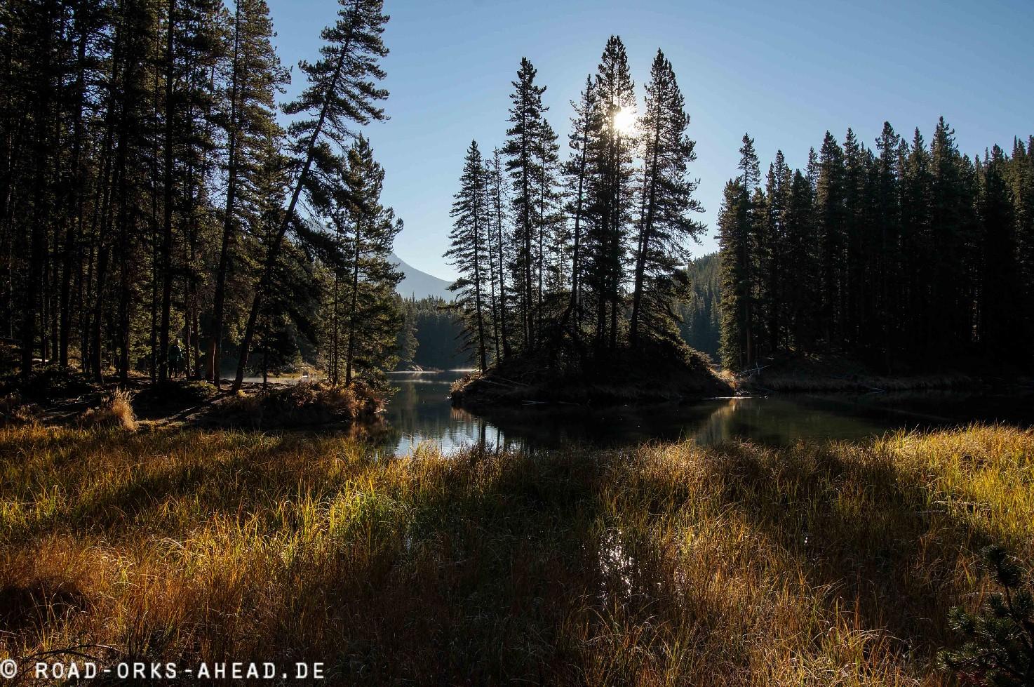 Moose Lake ohne Moose
