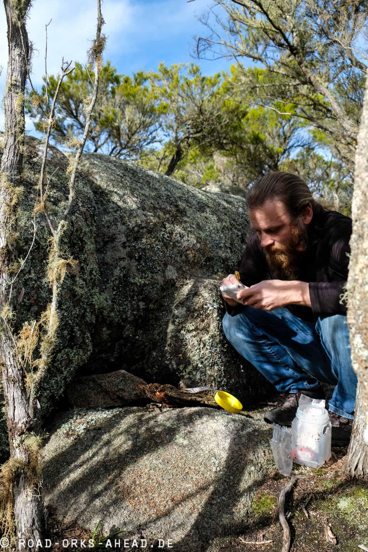 Geocaching Mount William Nationalpark
