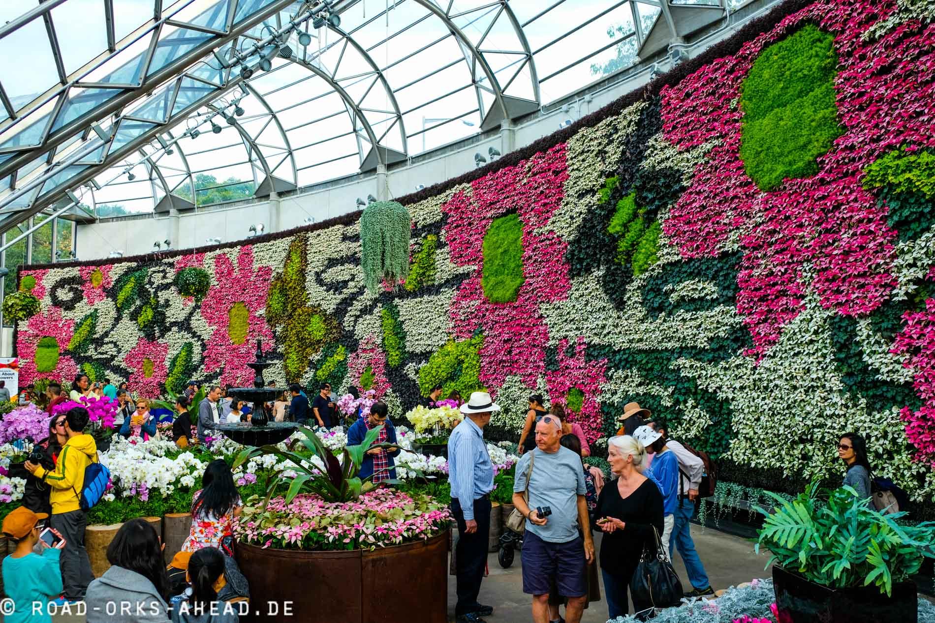 Blumenwand im Royal Botanic Garden Sydney