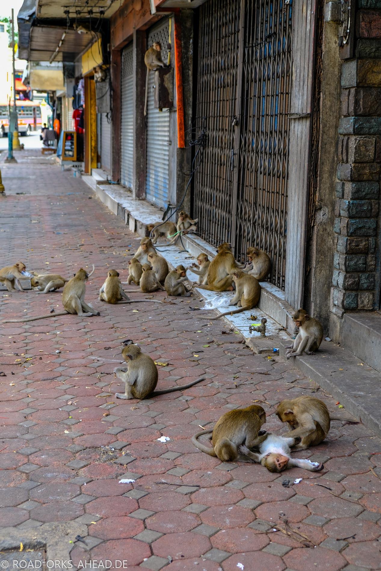 Bürgersteig fest in Affenhand