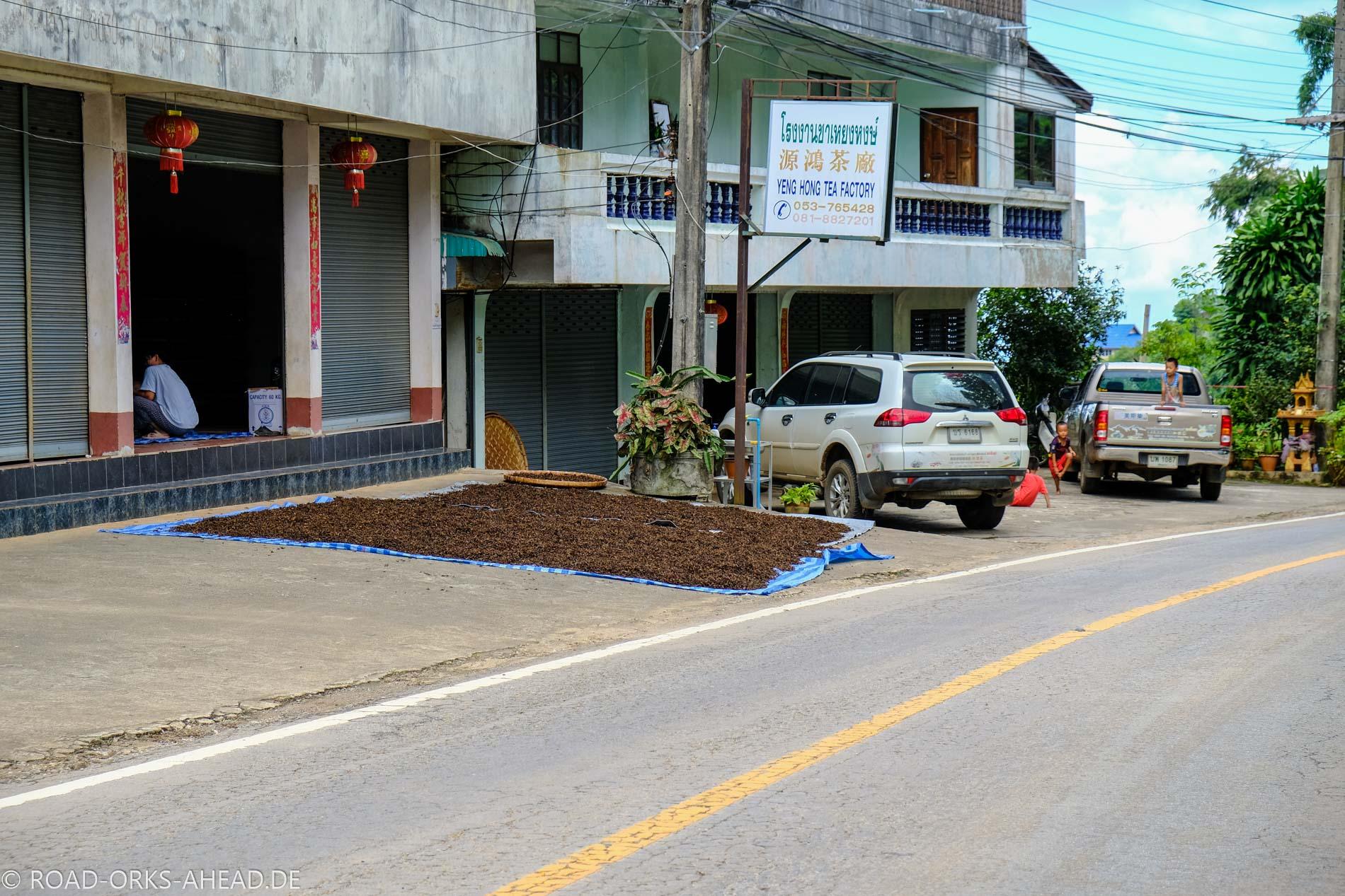 Teetrocknung in Mae Salong
