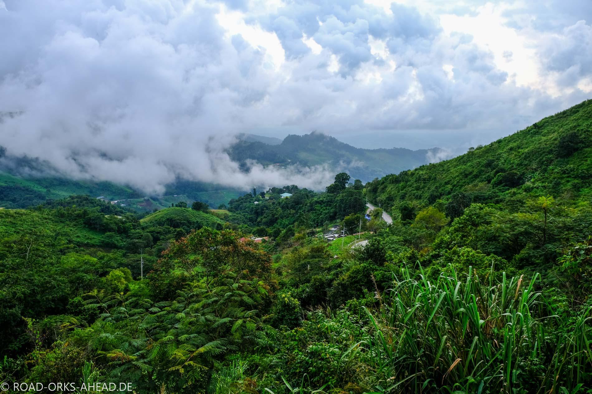 Blick in den laotischen Dschungel
