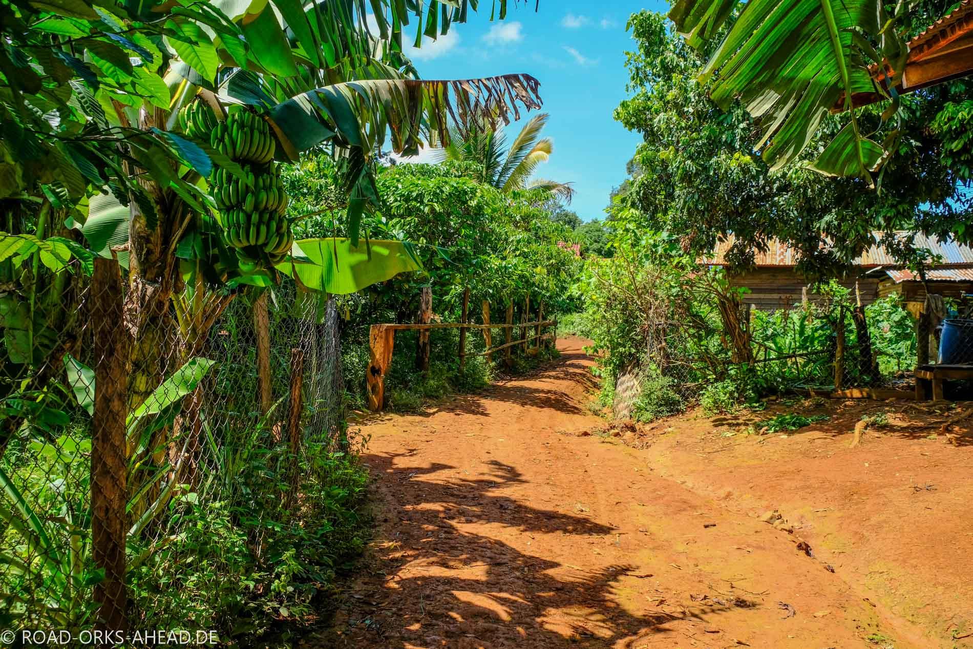 Indigenes Dorf - Laos