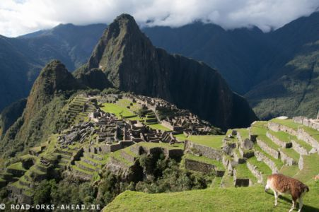 Machu Picchu - das Klassikerbild