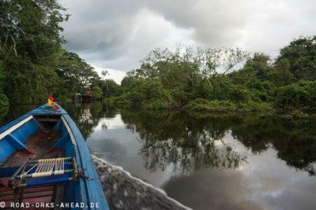 Mit dem Boot durch den Dschungel