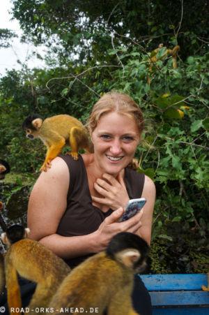 Invasion der Affen