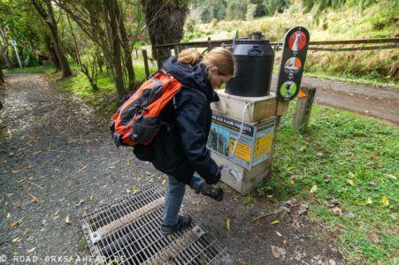 Schutz des Kauri Waldes vor Kauri dieback