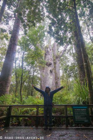 Te Matua Ngahere - Vater des Waldes