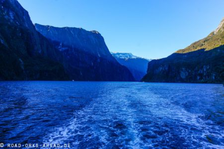 Bootstour Milford Sound