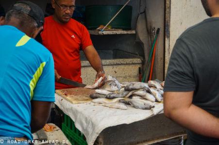 Fangfrischer Fisch