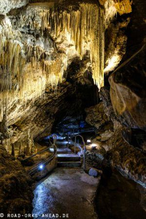 Marakoopa Cave, Tasmanien