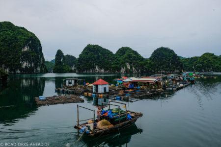 Im Vergleich zu Ha Long deutlich ruhiger: Lan Ha