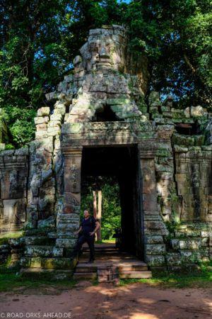 Der Wald erobert die Tempel zurück