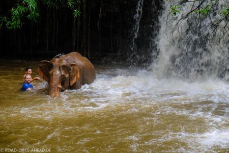 Bad mit Elefant