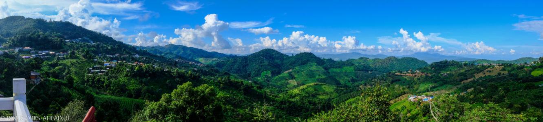 Mae Salong - Aussicht über Teeplantagen